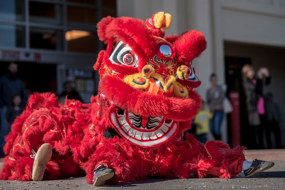 Chinese New Year_1-28-2017_231098