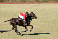 Atlanta Polo Club