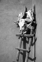 Skulls and Ladder - Truchas - High Road to Taos - IR