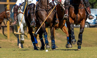Atlanta_Polo_Club_225242_10-23-2016